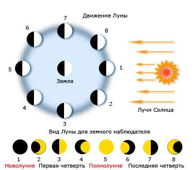 Лунный календарь стрижки