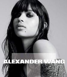 Alexander wang сумки и обувь. Купить.